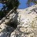 Das muss die Untere Vogelbergöhle sein. Ich hatte zwar ein Seil dabei, aber die Schwierigkeiten im glatten Fels zur Höhle zu klettern, waren klar zu hoch (Schätzungsweise V). Man müsste die Höhle durch Abseilen von ober her erreichen.