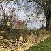 Bei Charmillotte kam die Sonne und damit die Herbstfarben.