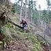 Im Abstieg durch den Wald zum Grossbach.