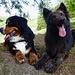 Artus & Wayonna