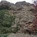 Auf dem Üetliberg gibt es einige Nagelfluh- und Sandsteinwände