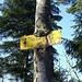 Der hungrige Baum verspeist die Tafel :-)