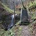 Weiterweg am Hoheneggbach entlang