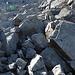 Über Steine und Blöcke geht es hoch.