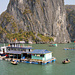 Floating Village in Ha Long Bay
