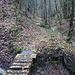 über diese Brücke geht es nur noch ein Stück entlang des Girennestbachs
