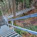 Abstieg ins Lochbachtobel über viele Leitern und Brücken