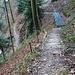 Abstieg ins Lochbachtobel