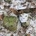 Hradišťany, TP, freigelegt von prähistorischem Müll