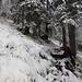 Schnee und Eis machen's nicht einfacher