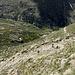 Im Aufstieg zum Rifugio Vittorio Emanuele II - Rückblick. Auf dem Weg sind etliche Berggänger zu erahnen.