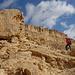 Salta Mount Ardon