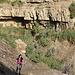 Wadi David