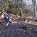 Nel suo primo tratto, il sentiero entra subito nel bosco e, con buona pendenza, fa guadagnare rapidamente quota.