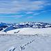 Blick zu den Freiburger Alpen