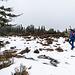 Kurz darauf haben wir den höchsten Punkt (1080 m) des Hundsrückens erreicht. Hier befindet sich auf einer offenen Fläche inselartig ein kleines Hochmoor inmitten von Latschenkiefern. Ein stiller, schöner Ort.