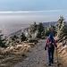 Die Wegführung runter von der Kleinen Grinde ist wirklich schön, oft man man Fern- und Tiefblicke nach Westen und Norden. So wie der Belchen im Südschwarzwald steht die Hornsigrinde recht nah an die Rheinebene herangerückt und lässt so den Höhenunterschied visuell gut erleben.