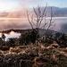 Immer wieder spannend zu Beobachten, wie die Thermik in höheren Lagen Wolken und Wolkenfetzen in schneller Geschwindigkeit über die Landschaft und entlang der Berghänge jagt.