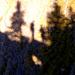 T6-Kletterer-Schatten über dem Felsenfenster