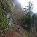 Unterwegs auf dem längeren & wilderen Zustieg zur Ruine Alt Bechburg.