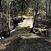 Naturbrück über die Dala