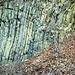 Stratificazioni calcaree