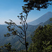 Etwas dunstig, aber schöner Blick auf Volcan de Agua
