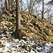 Der höchste Punkt des Chrinnenfluh-Ostgrates (Rückblick)