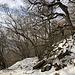 Unterwegs an der Milešovka - Rückblick während des Aufstiegs auf dem (vereinigten) Weg aus Richtung Bílka/Černčice. Hier sieht es sogar ein bisschen winterlich aus.
