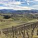 Schritt für Schritt wird die Aussicht schöner. Hier nach Süden ins Renchtal mit der Stadt Oberkirch.