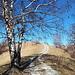 <b>Ripresa la bici, mi bastano cinque minuti per raggiungere la panoramica dorsale, a circa 1030 m, che offre delle vedute spettacolari sul Monte Generoso, sul Monte Bisbino, sulle valli sottostanti e sui colossi vallesani.</b>