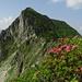 Das letzte Gipfelziel heute: Der Lütispitz
