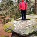 Der Beckenfels ist ein berühmter Felsen hier oben.