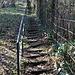 ein erster Blick auf die Treppen