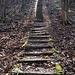 dann kommt die nächste Treppe, aber der Wegweiser oben deutet auf das Ende des Treppensteigens