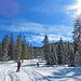 Der Schneeschuhpfad und die Tourenskiloipe teilen sich nur selten das Gelände.