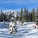 Dabei verläuft der Schneeschuhpfad öfters mitten durch den Wald.