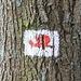 Lokaler Wanderpfad, Markierung rote Schnecke (?)