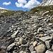 Im Aufstieg zum Passo dell'Uomo ist der Weg auch ein Bach.