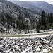 Auch [http://hikr.org/gallery/photo3081448.html?post_id=150271 hier] waren wir kürzlich schon unterwegs. Am Melkereikopf finden sich zwei der größten Blockhalden des Schwarzwalds, spannende Relikte der Eiszeiten, und bei Gelegenheit möchte ich ihnen mal einen eigenen Tourenbericht widmen.