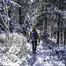 ... obwohl der Ostwind hier am Südwest-Hang des Bergs tendenziell etwas weniger Schnee abgeladen hat.