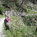 <b>I 12 km di sentieri permettono di visitare comodamente il Parco delle Gole della Breggia.</b>