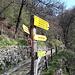 <b>Settantacinque metri dopo il ponte c'è un bivio; a sinistra si sale verso Morbio Superiore, a destra si scende in direzione dei resti del mulino e più avanti al Punt dal Farügin.</b>