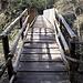 """<b>Ul Punt dal Farügin deve il suo nome alla presenza in zona di una bolla d'acqua, che """"fa ruggine"""". <br />L'antico tracciato che, raggiunto il versante di Castel San Pietro si fa erto e scosceso fino a raggiungere la sommità della collina, venne abbandonato a causa della sua pericolosità per essere sostituito dal sentiero che passa sul ponte di Canaa. </b>"""
