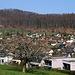 Blühende Obstbäume am oberen Ortsrand Frenkendorfs (333m). Im Hintergrung ist der Adler / Madlechöpfli (535m).