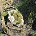 Hier liegt das berühmte Restrisiko, überschaubar, wenn es der erste Felsbrocken war, der in 140 Mio. Jahren heruntergepoltert ist