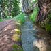 Bärgwasser: schöne, naturbelassene Suone