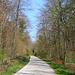 Rheinfelden fuhr ich meist dem Rhein entlang eine grössere Strecke über schöne Waldstrassen nach Wallbach. Unterwegs besuchte ich fünf römische Wehranlagen.