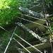 Abstieg von der Hütte unterhalb P. 983 ins Bachbett.