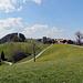 auf dem Höhenweg über Eggersriet
